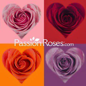 http://www.passionroses.com/