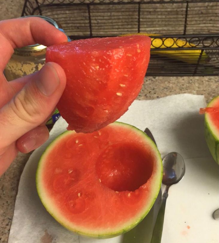 Hamptons to Hollywood - Watermelon Shot Glasses