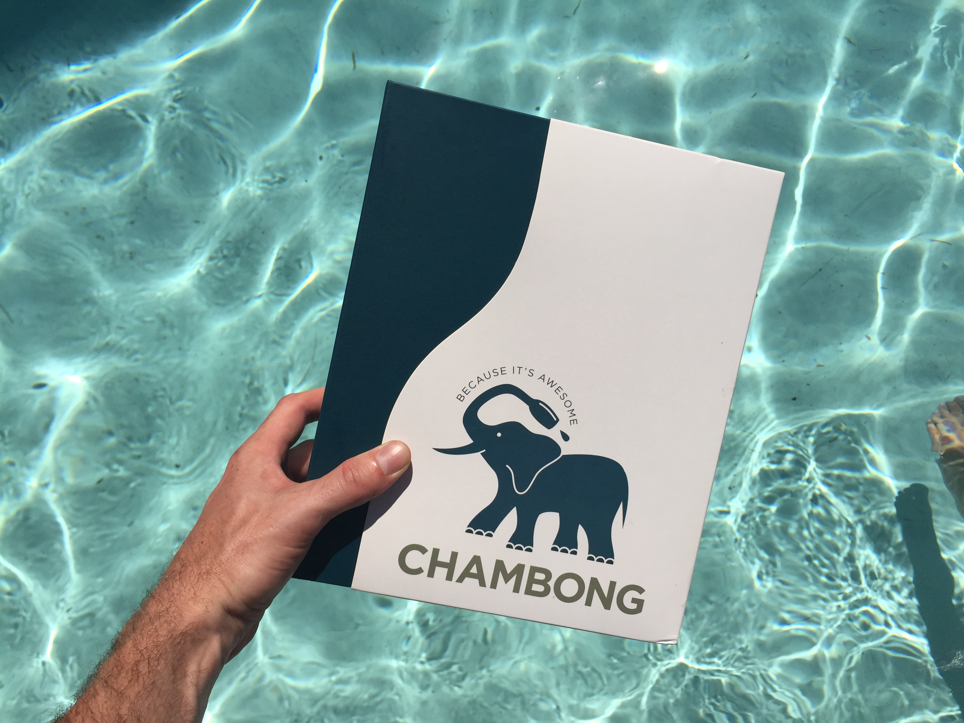 #ChampagneSociety Loves Chambong - Hamptons to Hollywood