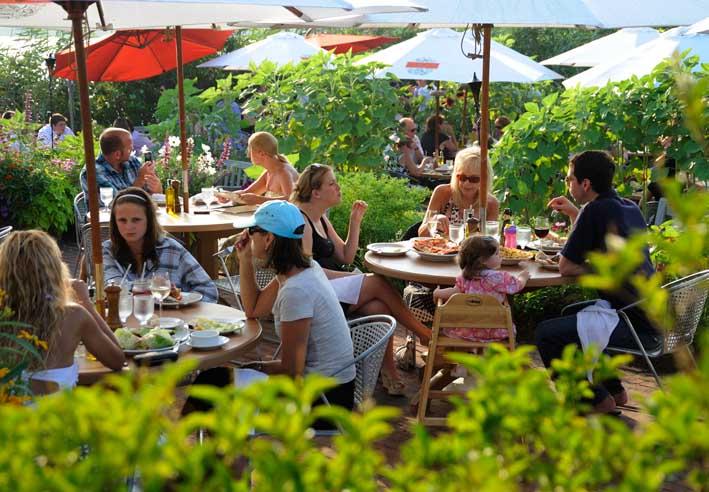 Hamptons to Hollywood Tastes The Harvest