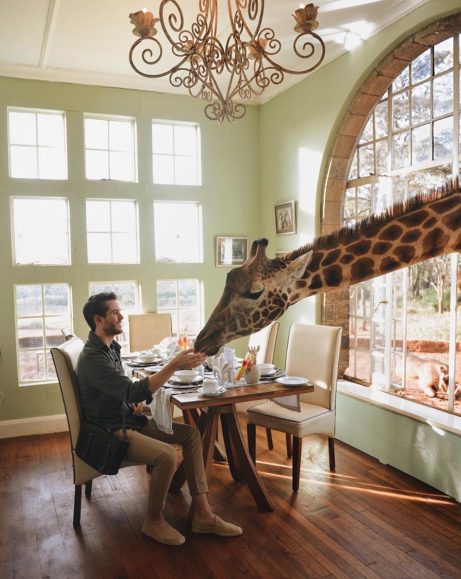 Adam Gallagher, Giraffe Manor